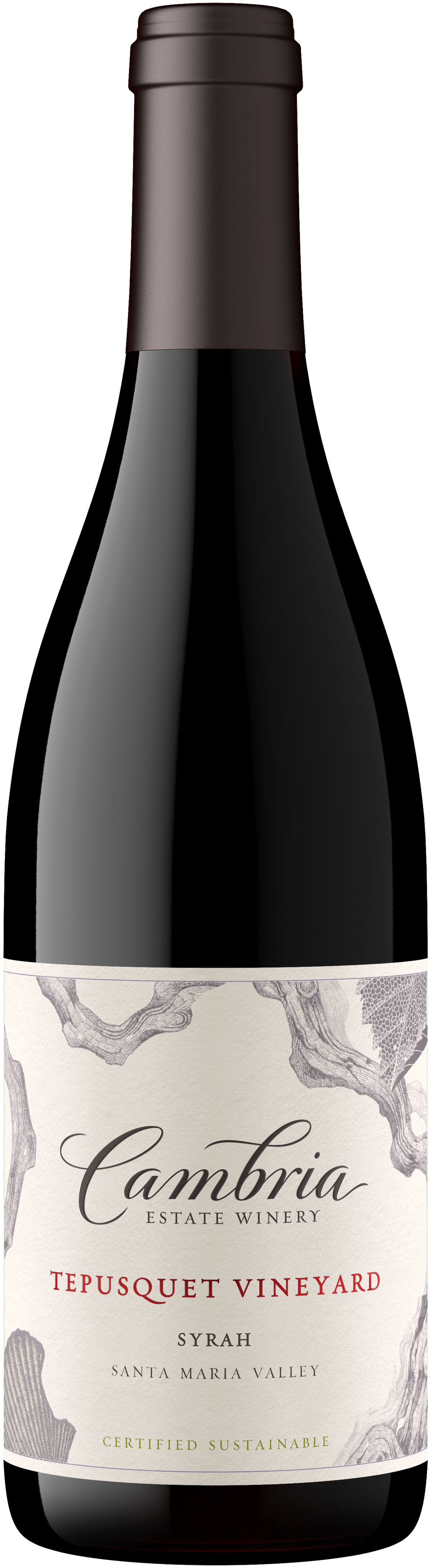 Syrah wine bottle